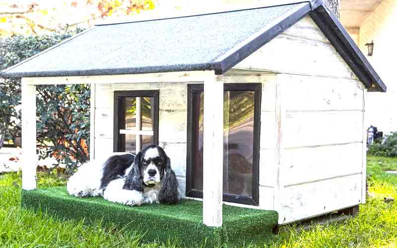 Dog Houses For Hot Weather